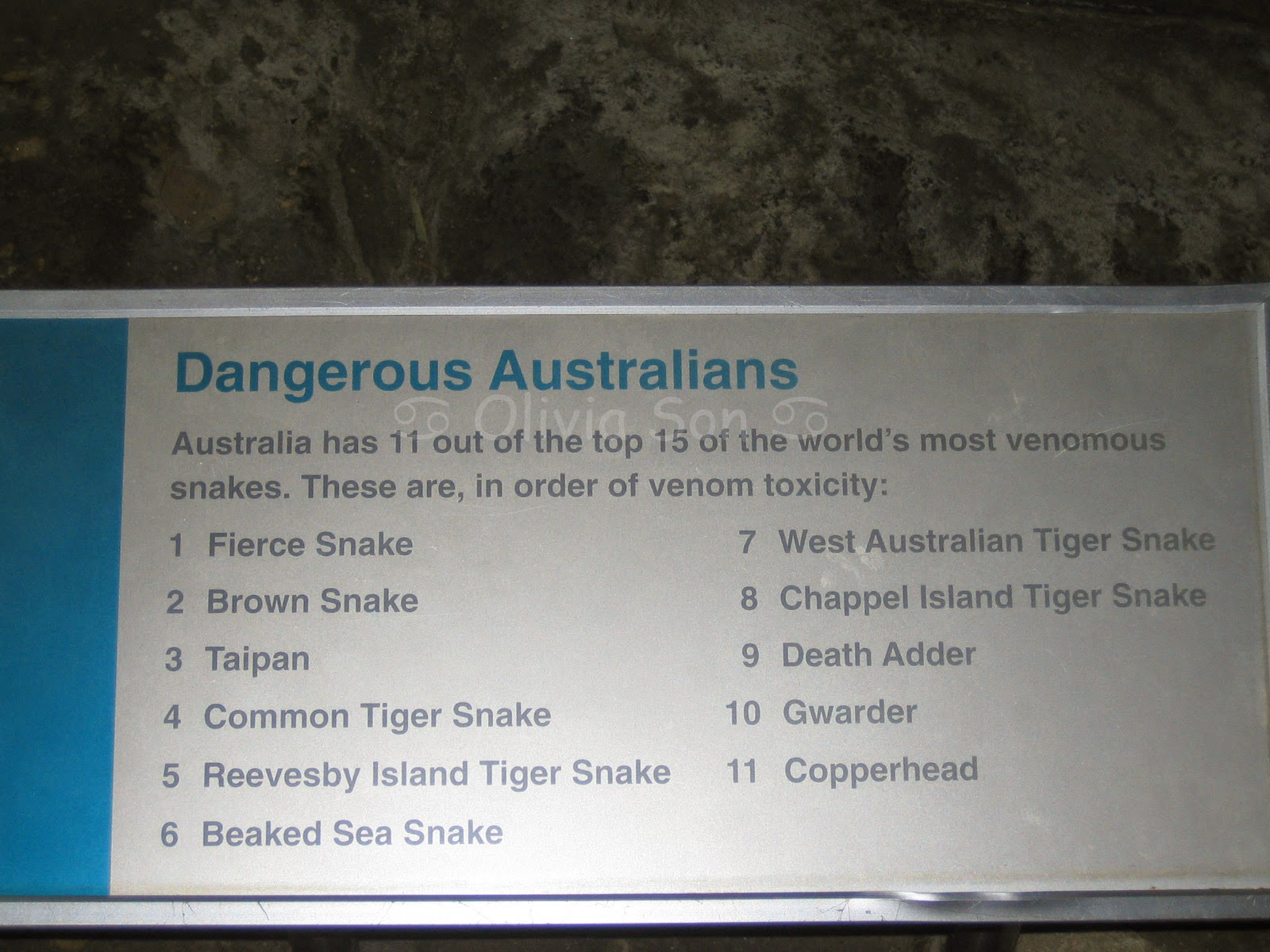Taronga Zoo, Sydney, Australie