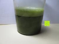 Flüssigkeit: 100g Original Japanischer BIO Matcha Pulver aus Uji Japan - Für Grüntee-Latte, Coldbrew Matcha, Smoothies, Backen. 0,16/Portion