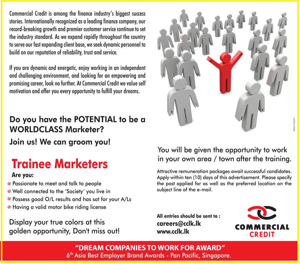 Trainee Marketers