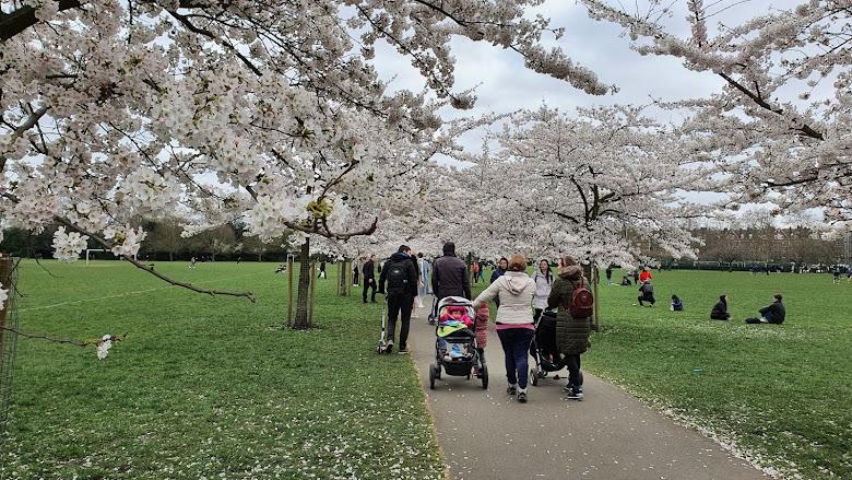 03-21 Battersea Park