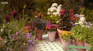 Diarmuids garden