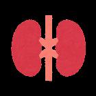 内臓のアイコン(腎臓)