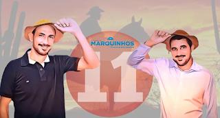 Marquinho Sena é o novo prefeito de Lagêdo do Tabocal
