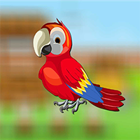 AvmGames Cute Parrot Escape Walkthrough