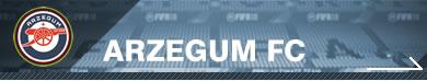 Arzegum FC
