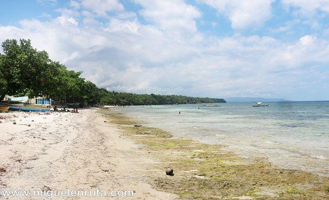 Bikini-Beach-Panglao-Filipinas
