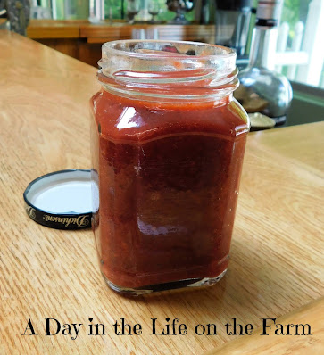 Strawberry Rhubarb BBQ Sauce