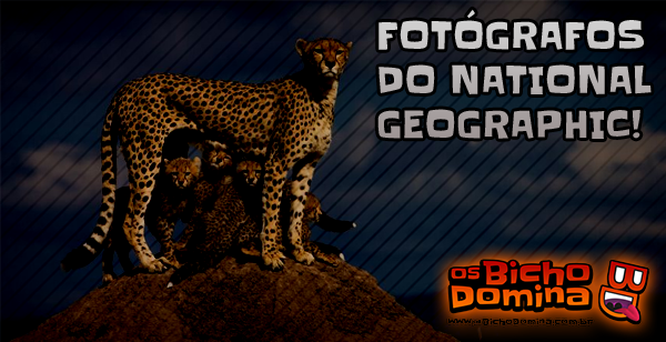 Fotógrafos do National Geographic!