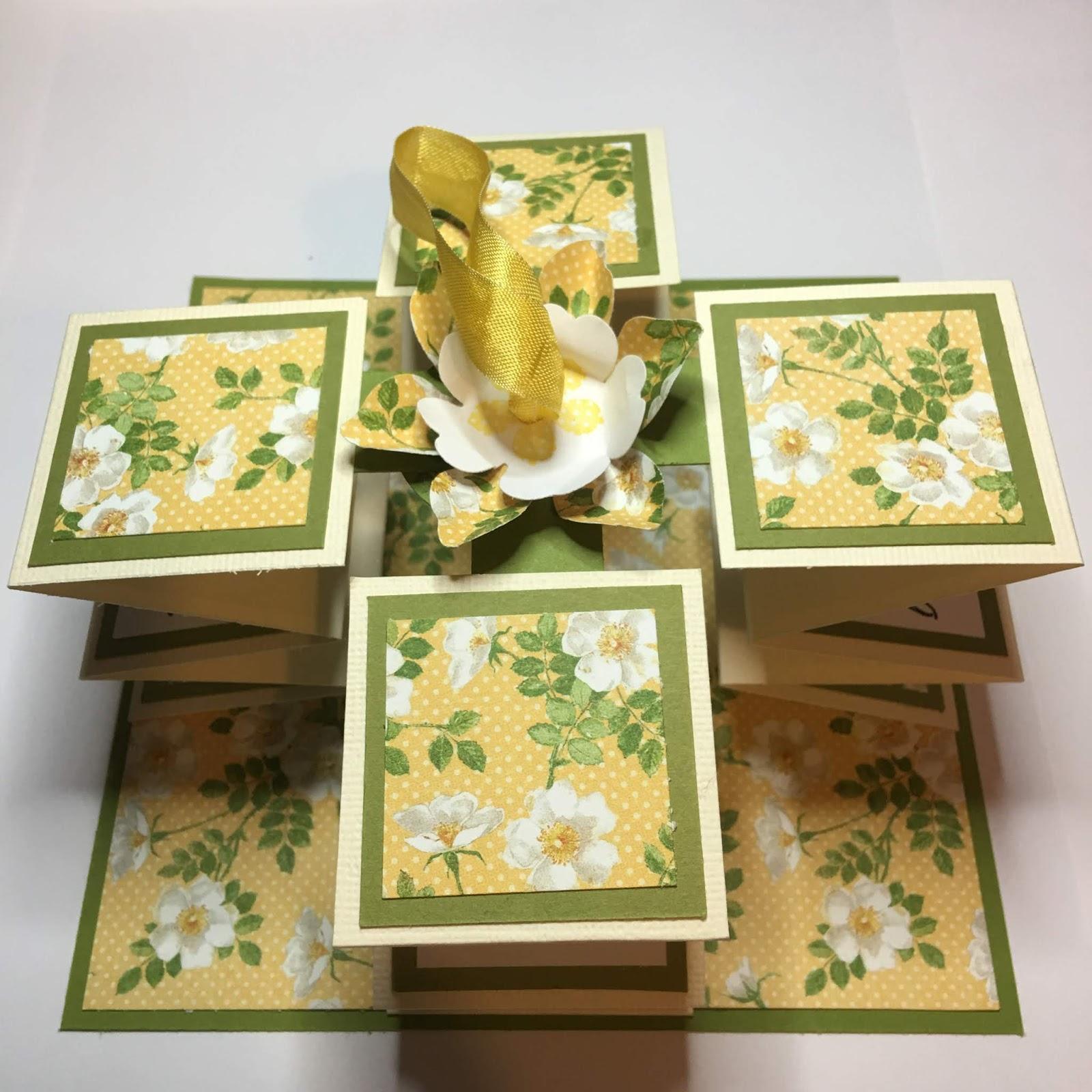 Birdcage craft studio pull up greetings card photo tutorial img8949g m4hsunfo