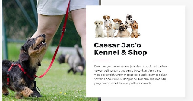 Caesar Jac'o Kennel & Shop