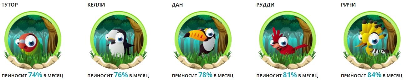 Инвестиционные планы Mega-Birds