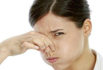 Consejos para eliminar los malos olores del hogar (III)