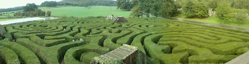 hedge maze, longleat hedge maze, longleat maze, largest hedge maze, biggest maze in the uk, biggest maze in the world, maze england, longleat maze solution, wiltshire's longleat maze, biggest maze in the world, longleat,