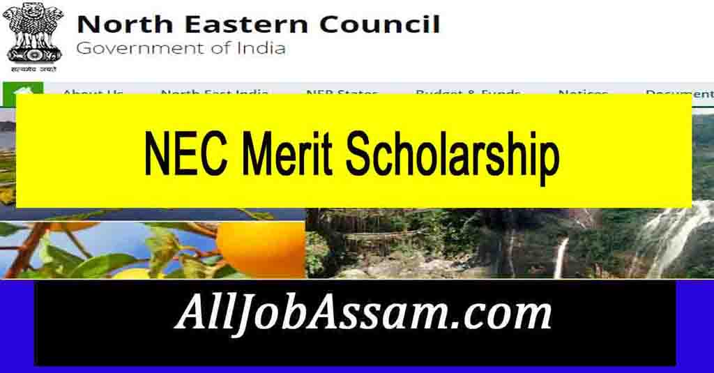 NEC Merit Scholarship 2021-2022