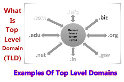 Top Level Domain (TLD) Definition, Use, and Examples - What is a Top Level Domain