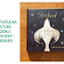 Spectacular Picture Books Highlight - Starbird
