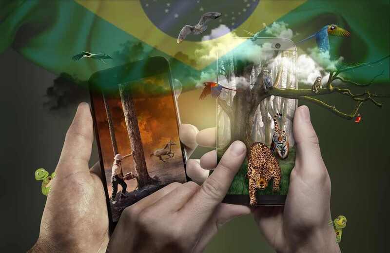 No início da pandemia do coronavírus, o Brasil e o restante do mundo começaram a avaliar como o novo contexto de vida influenciaria nas questões ambientais e na forma como homem e natureza passariam a conviver.