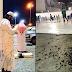 Ribuan Serangga Serang Kota Mekah Dan Madinah