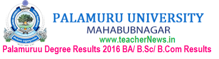 Palamuruu University Degree Results 2016 BA BSc BCom PU UG 1st, 2nd, 3rd Year Supply Results