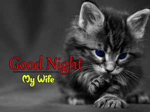 Beautiful Good Night 4k Images For Whatsapp Download 27