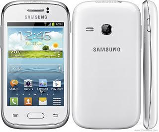 Samsung Galaxy Young S6310 - Spesifikasi, Review dan Harga