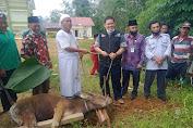 Sinergitas ACT Dengan DPD JOIN Tebo, Bagikan Daging Kurban di Ponpes Darul Hikam Rimbo Ulu