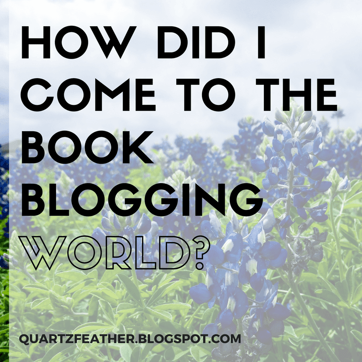 How Did I Come To The Book Blogging World?