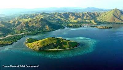 7 Kekayaan Alam Papua Barat Tak Ternilai Harganya Reygian Gambar