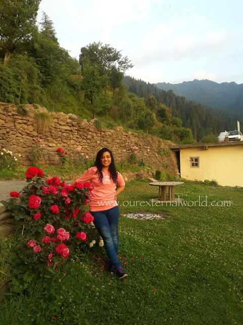 guest house, Shoja, red roses