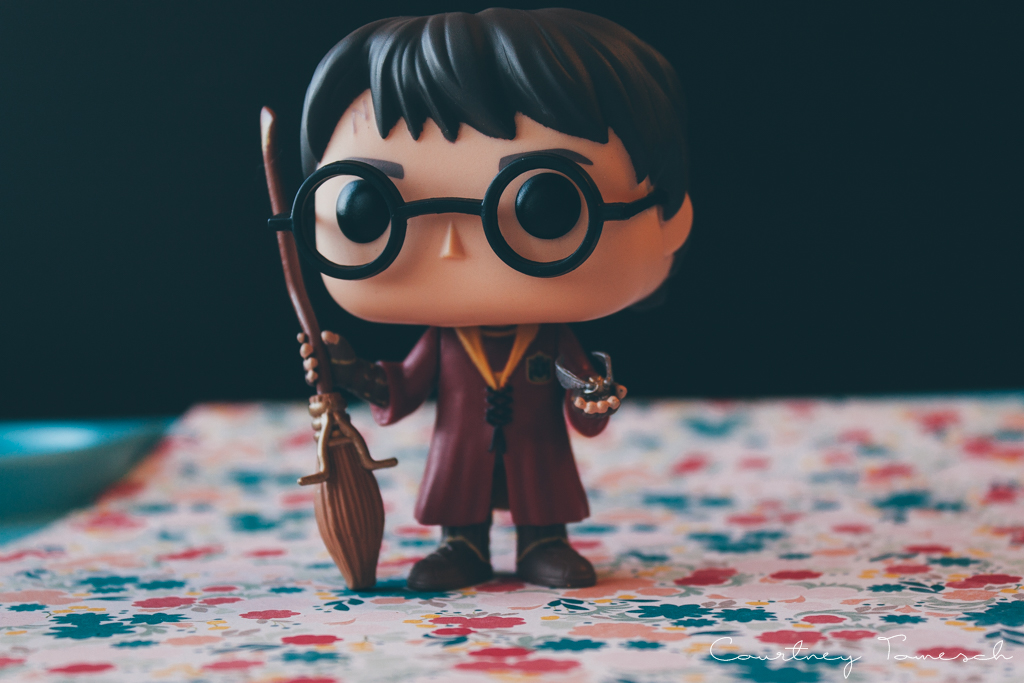 Courtney Tomesch What I Got For Christmas 2015 Harry Potter Funko Pop