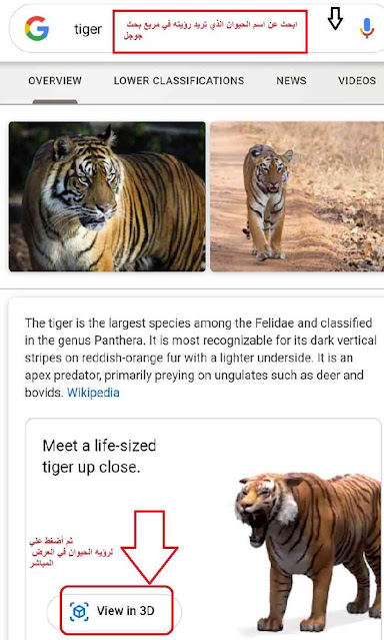 كيف تتمكن من التصوير مع حيوانات ثلاثية الأبعاد من Google وكائنات الواقع المعزز القائمة الكاملة