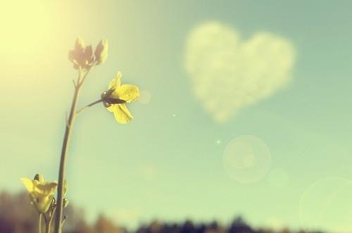 Será Que Deus Me Ama A Resposta Está Parmamykarma: Amor Que Nunca Me Abandona