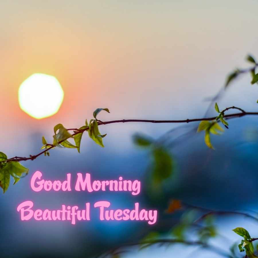 good morning tuesday blessings images