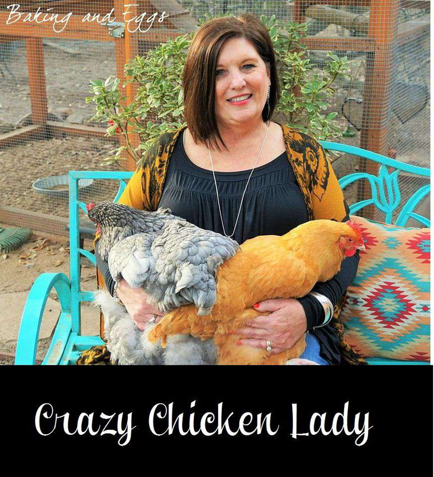 National Chicken Lady Day Wishes Awesome Picture