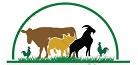 Hội chăn nuôi