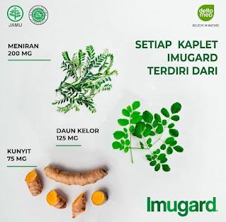 Manfaat Imugard Herbal Indonesia Tingkatkan Imunitas Tubuh Keluarga