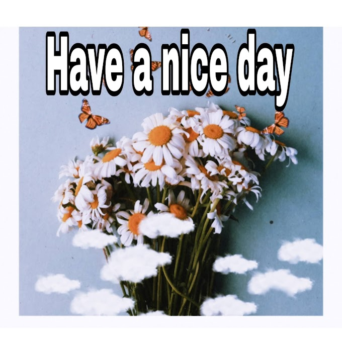 Best have a nice day images in 2021-Have a nice day images Download