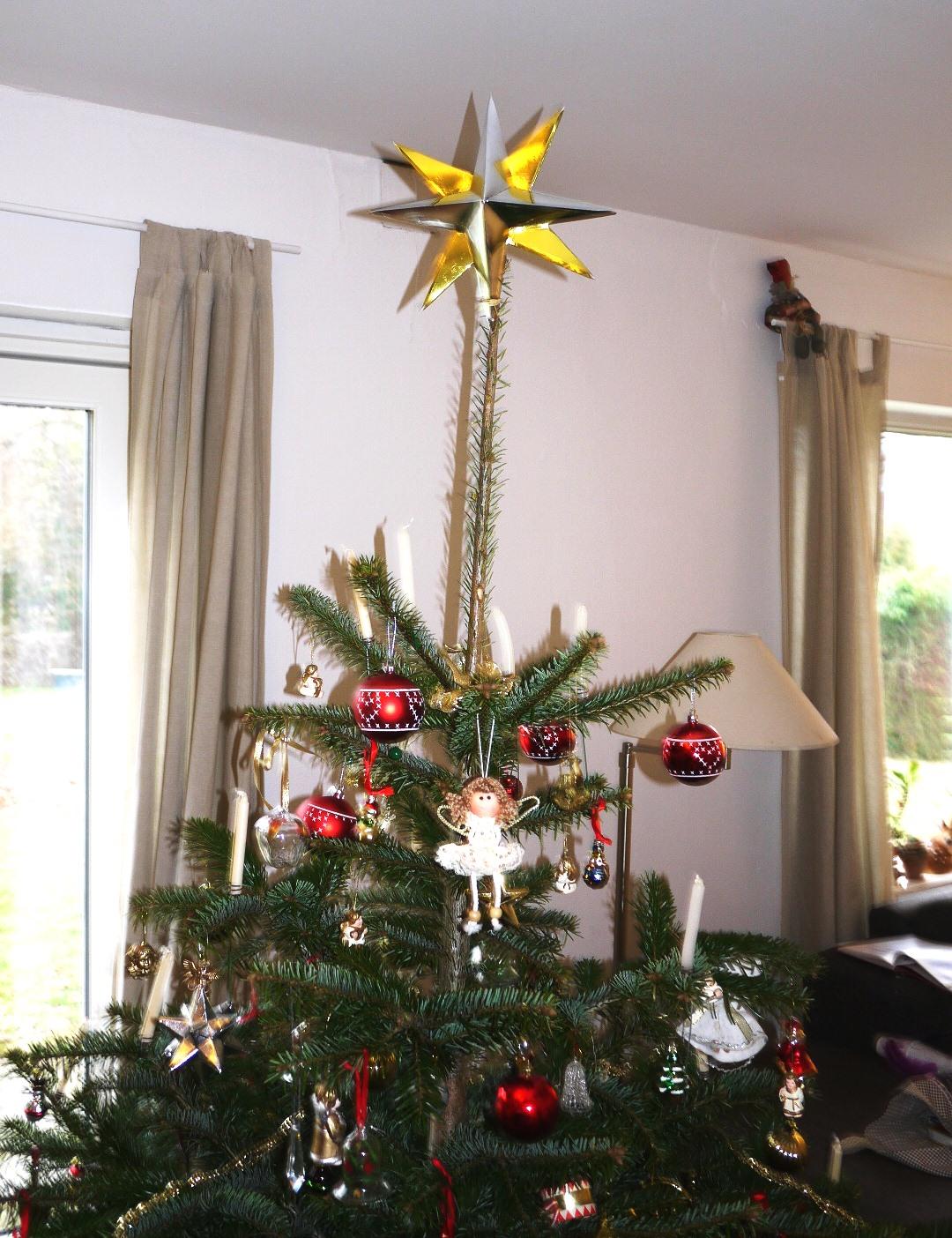 Fantastisk Brombleberries: GDS juletræs stjerne DA96