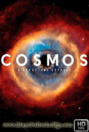 Cosmos: A Spacetime Odyssey [1080p] [Latino-Ingles] [MEGA]