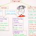 9. Sınıf Biyoloji ve Edebiyat Dersleri
