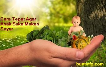 Buat Info - Ketahui 5 Cara Tepat Agar Anak Suka Makan Sayur
