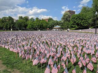Flag garden on Boston Common for Memorial Day