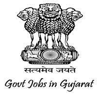 GPSSB jobs,latest govt jobs,govt jobs,latest jobs,jobs,Chief Sevika jobs