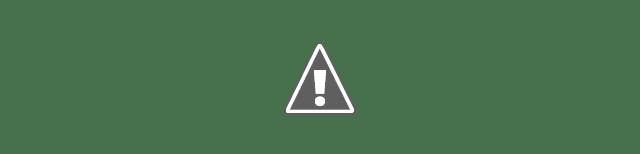 Si votre URL existe dans dans l'index de Google, il vous le fera savoir.