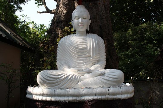 What Is Meditation Used For ?