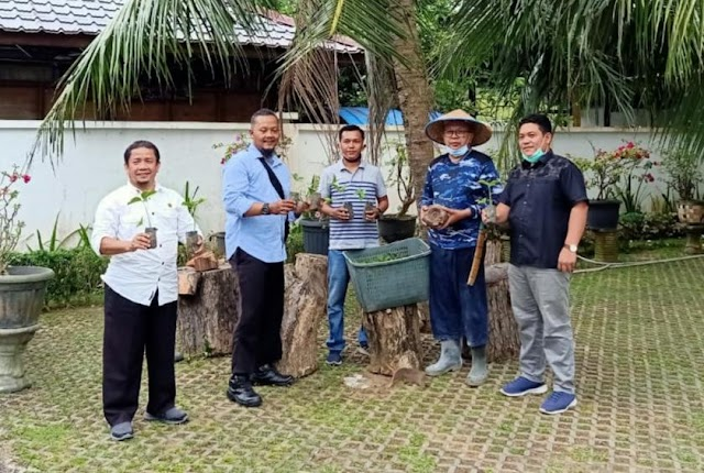 Dewan UKM Labura Jadikan Sergai  Pengembangan Porang di Sumut