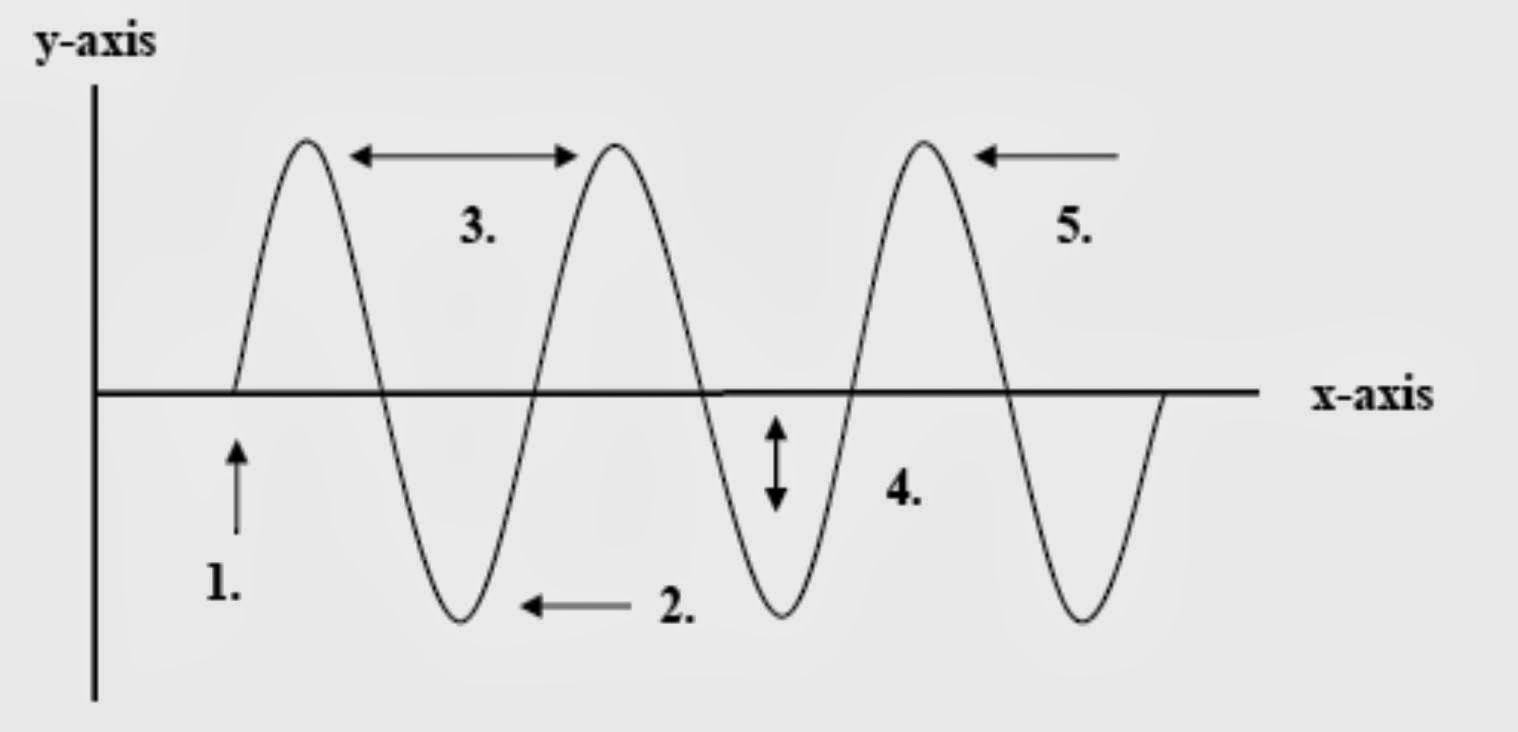 Wave Indicates Amplitude Diagram Which Part