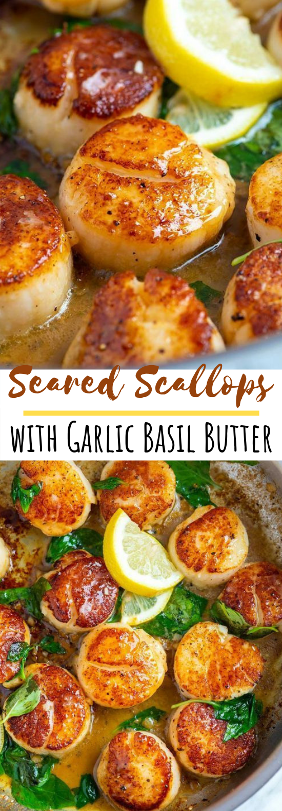 Seared Scallops with Garlic Basil Butter #seafood #dinner