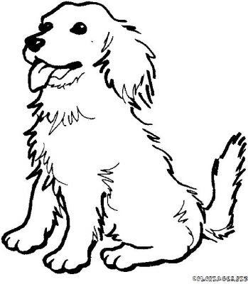 Imagenes Para Colorear Dibujo De Un Perro Labrador Para