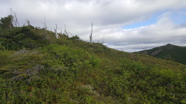 Sentier en direction vers le mont Vallières-de-Saint-Réal
